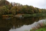 Herbst im Muldetal (3).jpg