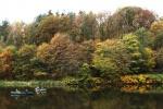 Herbst im Muldetal (4).jpg