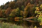 Herbst im Muldetal (7).jpg