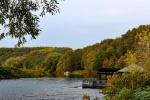 Herbst im Muldetal (13).jpg
